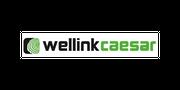 Wellink Caesar Timber Technology - HENCON FORESTRY B.V.