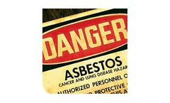 Asbestos Testing and Consulting Lab Services