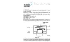 Hydrogen Sulfide Electrochemical Sensor Introduction - Brochure