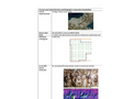 Case Study - Cavities Detection 2