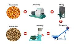 Amisy - 200-300kg/h Small Feed Pellet Line