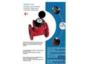 DHW1100 Woltmann Watermeter Datasheet