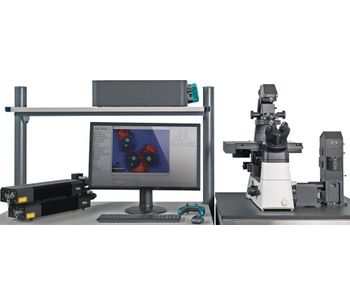 Inverted Confocal Raman Imaging-1