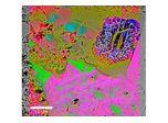 Correlative Raman Imaging and Scanning Electron Microscopy