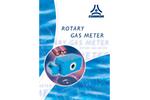 Rotary Gas Meters Brochure