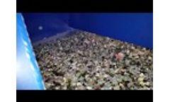 Air Lift Channel Feeder - ALCF 2 Video