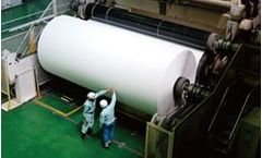 Water treatment chemicals solutions for pulp and paper industry