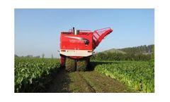 Vervaet Beet Eater - Model 625 - Sugar Beet Harvester