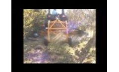Butler Equipment: Dual-side Mower in Blueberries - Video
