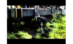 Dawn Biologic Demo at Borlaug Day 2014 - Video