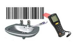 Water Temperature Monitoring Services