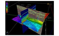 RokDoc - Version CoViz - 3D Visualisation Software