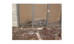 Mold Mitigation Services