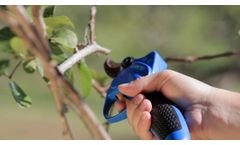 Battery Operated Pruning Shears Jacto PR40 - Video