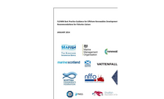 FLOWW Best Practice Guidance for Offshore Renewables Developments: Recommendations for Fisheries Liaison Brochure