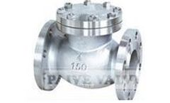 Sichuan-Paive - Swing Check Valve