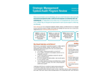 Management and Strategic Review Brochure