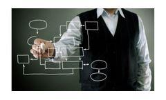Project & Risk Management Services