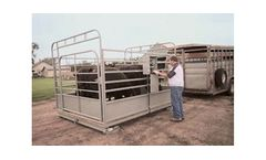 Cattle Scale