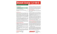 EnzUp™ - Enzyme Nutrient Brochure