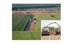 Agronomy and Crops Services