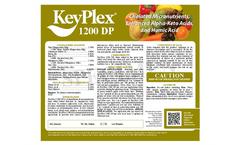 KeyPlex - Model 1200 DP - Formulation of Micro Nutrients Brochure