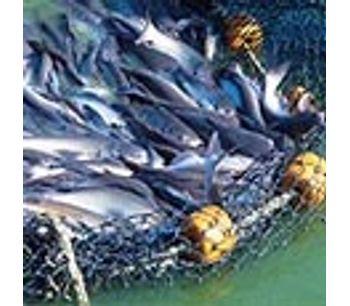 Surface Aerators for Aquaculture - Agriculture - Aquaculture
