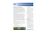 Remediation and Construction Services Brochure