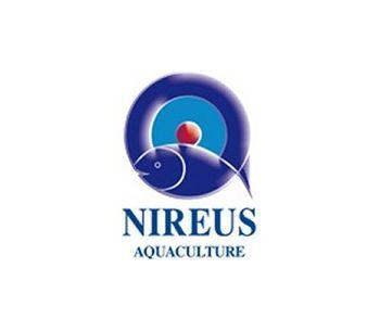Nireus - Sea Bream