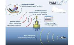 PAMBuoy - Marine Mammal and Marine Noise Monitoring System
