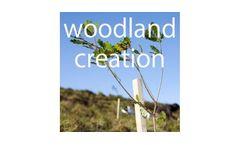 Woodland Creation Services