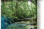 Stormwater Master Planning Services