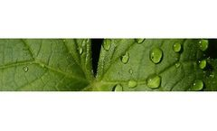 Environmental and Compliance Services