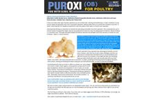 Puroxi for Poultry - Brochure