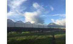 Greenhouses & Constructions