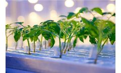Cultivation Advice Services