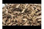 ITS850X550E Shredding Cardboard & Paper Video