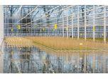 Gipmans Planten operates large ozone disinfectant