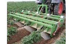 Baselier | GKB | Potato Crop Cultivation | Chemical-Free | Mechanical | Weed Control Video
