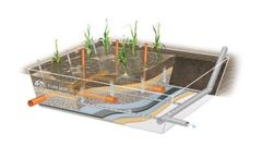 Sludge Treatment Reed Beds Plant (STRB)
