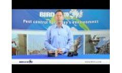 Bird X BugChaser wURL - Video