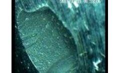 Rigid Borescope Industrial Inspection Video Sample - Video