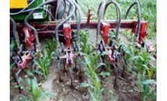 Flame Weeding For Maize, Soy, Sunflower