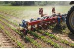 Hatzenbichler - Sugar Beet Interrow Cultivator