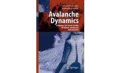 Avalanche Dynamics