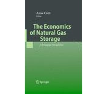 The Economics of Natural Gas Storage
