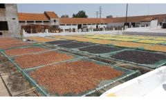 Solar Drying Installation for Grapes in Herdade Vale da Rosa, Solar Dryer, Drying fruits, Secador - Video