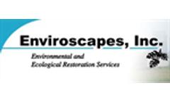 Wetland Restoration, Enhancement & Mitigation Services