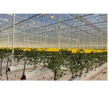 VEK - Commercial Production Services
