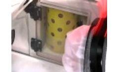 Bugbox Anaerobic Workstation Operation Video